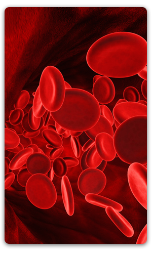 article about hematology